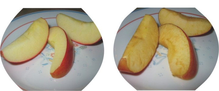 Apples with Fresh Sliced/ Apples without Fresh Sliced